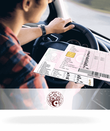 Permis de Conduire - Carte Immatriculation de Véhicule
